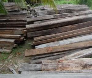 Kayu-kayu akan cepat membusuk bila tidak ditreatment dengan baik.