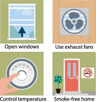cara mengurangi kadar formaldehid di rumah